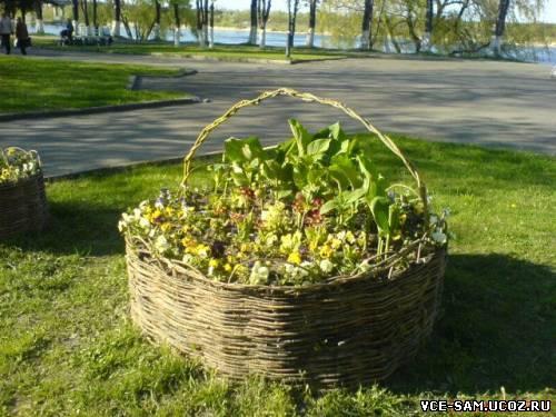 Заборчики для клумб и цветников